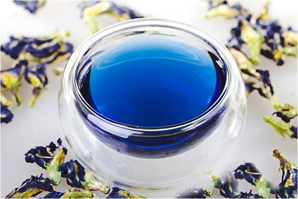 Тайский синий чай анчан и его полезные свойства